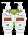Acheter Rogé Cavaillès Hygiène intime Soin naturel Toilette Intime Sécheresse 2Fl/250ml à LORMONT