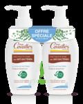 Acheter Rogé Cavaillès Hygiène intime Soin naturel Toilette Intime Anti-bactérien 2Fl/250ml à LORMONT