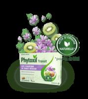 Phytoxil Transit Comprimés B/20 à LORMONT