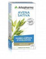 Arkogélules Avena Sativa Gélules Fl/45 à LORMONT