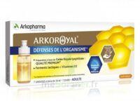 Arkoroyal Défenses Naturelles Gelée Adulte 7 Doses/10ml à LORMONT