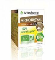 Arkoroyal 100% Gelée Royale Bio Gelée Pot/40g à LORMONT