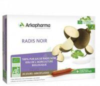 Arkofluide Bio Ultraextract Radis Noir Solution Buvable 20 Ampoules/10ml à LORMONT