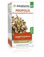 Arkogélules Propolis Bio Gélules Fl/45 à LORMONT