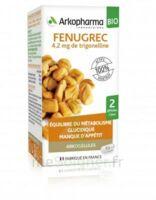 Arkogélules Fenugrec Bio Gélules Fl/40 à LORMONT