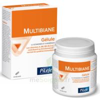 Pileje Multibiane 30 Gélules à LORMONT