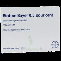 Biotine Bayer 0,5 Pour Cent, Solution Injectable I.m. à LORMONT