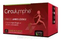 Santé Verte Circulymphe Triple Actions B/60 à LORMONT