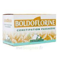 Boldoflorine, Mélange De Plantes Pour Tisane En Sachet-dose B/24 à LORMONT