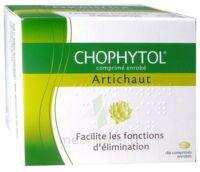 Chophytol Cpr Enr 6plaq/30 à LORMONT