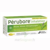 Perubore Caps Inhalation Par Vapeur Inhalation Plq/15 à LORMONT