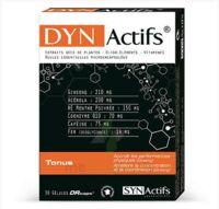 Synactifs Dynactifs Gélules B/30 à LORMONT