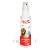 Clément Thékan Caniderma Solution Externe Cicatrisant Spray/125ml à LORMONT