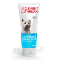 Clément Thékan Shampooing Poils Blancs T/200ml à LORMONT