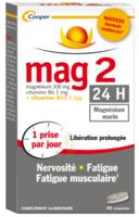 Mag 2 24h Comprimes B/45+15 Offert à LORMONT