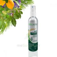 Naturactive Assaini'spray 200ml à LORMONT