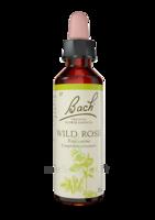 Fleurs De Bach® Original Wild Rose - 20 Ml à LORMONT